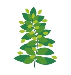 Green Leaves icon Garden design graphic vector