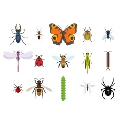 Insects and bugs pests and midge set icons vector