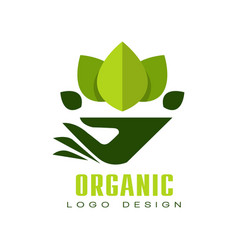organic logo design healthy premium quality food vector image