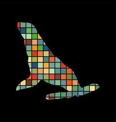 Phoca nautica color silhouette animal vector