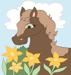 Daisy Flowers vector image