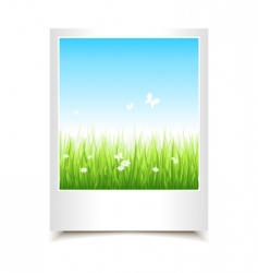 single summer photo vector image