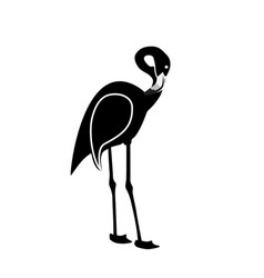 black and white pink flamingo isolated on white vector image vector image