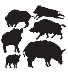 wild boar silhouette vector image vector image