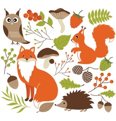 Woodland animals set vector