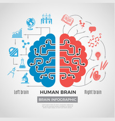 brain silhouette infographic creative thinking vector image