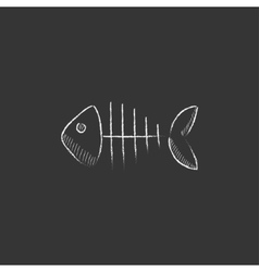 Fish skeleton Drawn in chalk icon vector