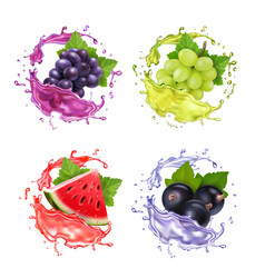 grape black currant and watermelon juice splash vector image