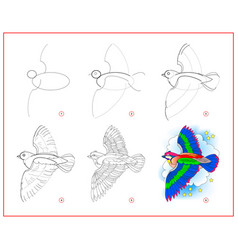 how to draw cute flying bird educational page vector image