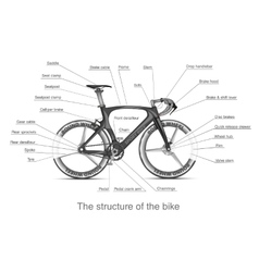 Infographic of the structure of bike vector image