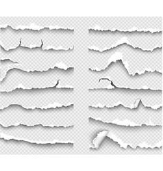 Set elements transparent templates torn paper vector
