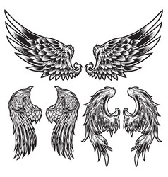 Wings bird feather black white tattoo set 7 vector