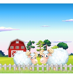 Two sheeps inside the fence with a barn at the vector image