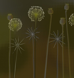 Floral background with dandelions vector image vector image