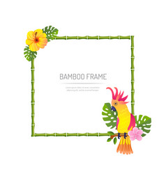 Bamboo frame with parrot on white background vector