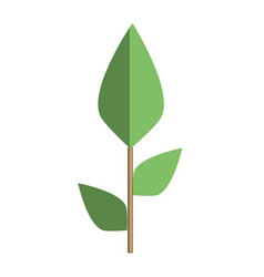 Ecology plants with leaves icon vector
