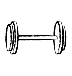 sketch dumbbell weight gym equipment vector image
