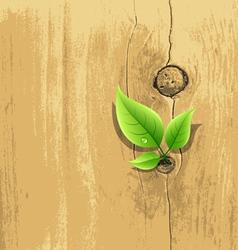 Green Leaf on old wood background vector image vector image