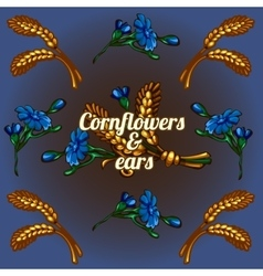 Bright wallpaper with cornflowers and ears vector
