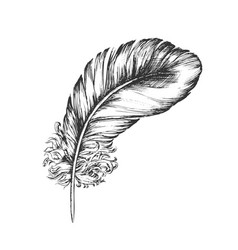 decorative bird flying element feather ink vector image