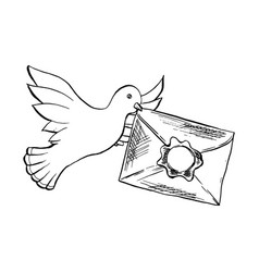 Dove bird flying with envelope in sketch style vector