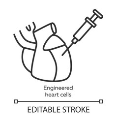 Engineered heart cells linear icon human vector