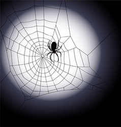 Halloween background - of spiders web vector