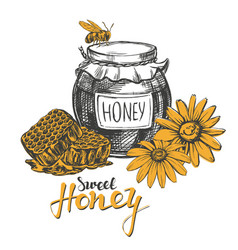 Honey design elements set detailed engraved vector