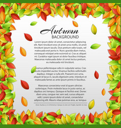 light autumn floral template vector image