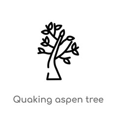Outline quaking aspen tree icon isolated black vector