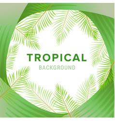 tropical palm leaves jungle leaf floral vector image
