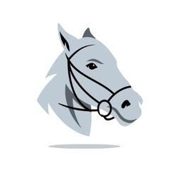 Horse head Cartoon vector image vector image