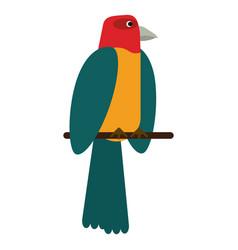 parrot bird animal icon vector image