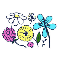 set of cute colorful flowers vector image vector image