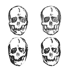 Set of Skulls isolated on white background vector image