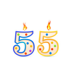 fifty five years anniversary 55 number shaped vector image