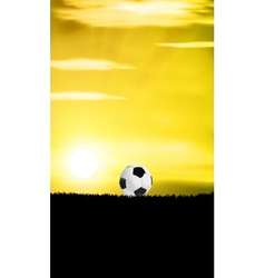 Football Grass Field vector image vector image