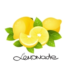 Fresh lemon fruit Realistic citrus slice vector