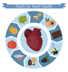 Healthy heart foods infographics vector image
