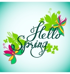 Hello Spring Butterfly vector