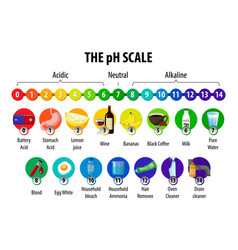 Ph scale diagram on white background vector
