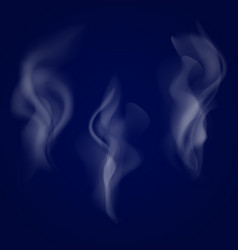 smoke set isolated on dark background vector image