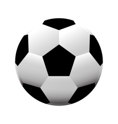 Soccer ball football vector image
