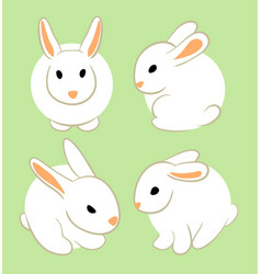 white rabbits vector image