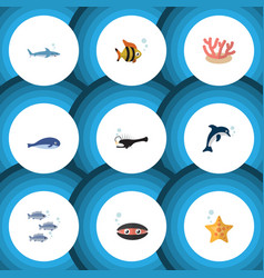 flat icon sea set of fish scallop cachalot and vector image vector image