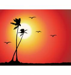 tropical sunset palm tree silhouette vector image