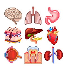 Pixel human body parts icons set vector image