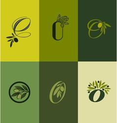 Olive tree branch set of labels vector