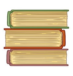 cartoon - stack books vector image