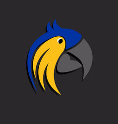 head parrot vector image